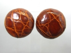 BOTTEGA VENETA(ボッテガヴェネタ)のイヤリング