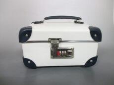 GLOBE TROTTER(グローブトロッター)のバニティバッグ