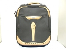 Samsonite(サムソナイト)のキャリーバッグ