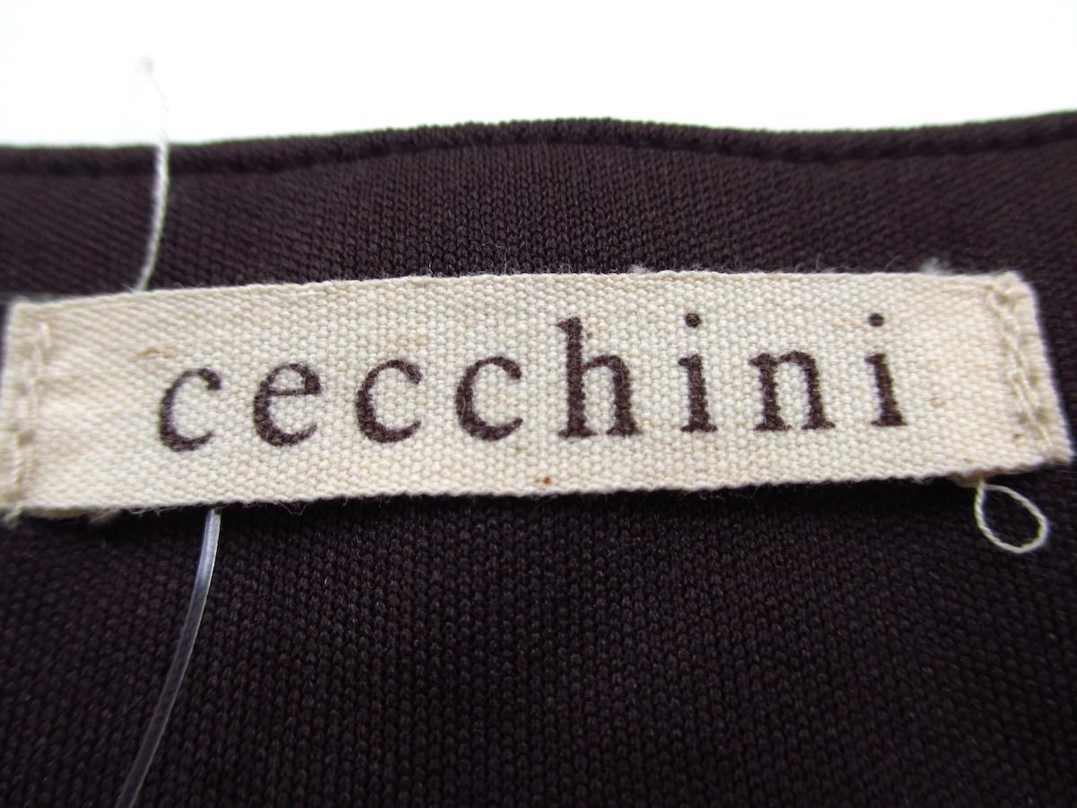 cecchini(チェッキーニ)のカットソー