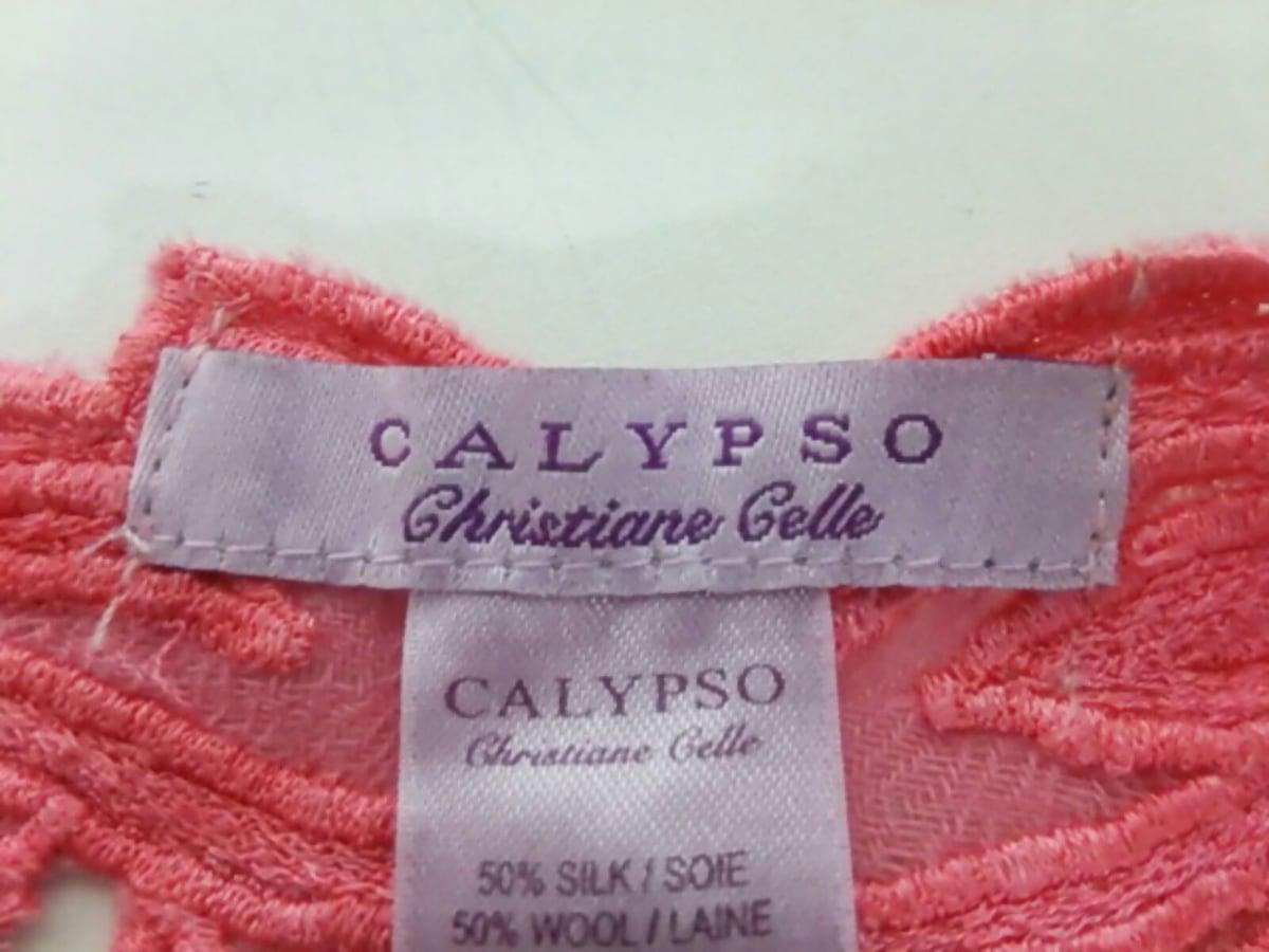 CALYPSO(カリプソ)のマフラー