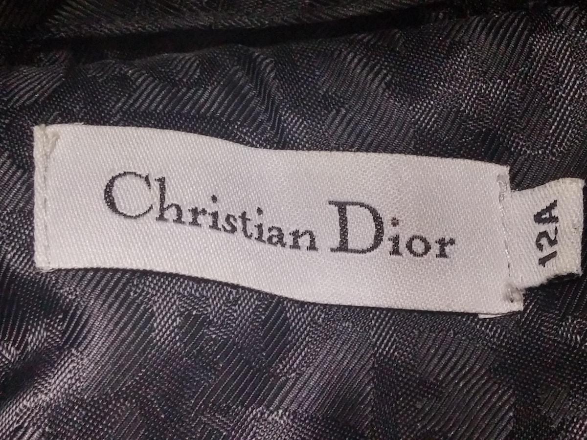 ChristianDior(クリスチャンディオール)のダウンジャケット