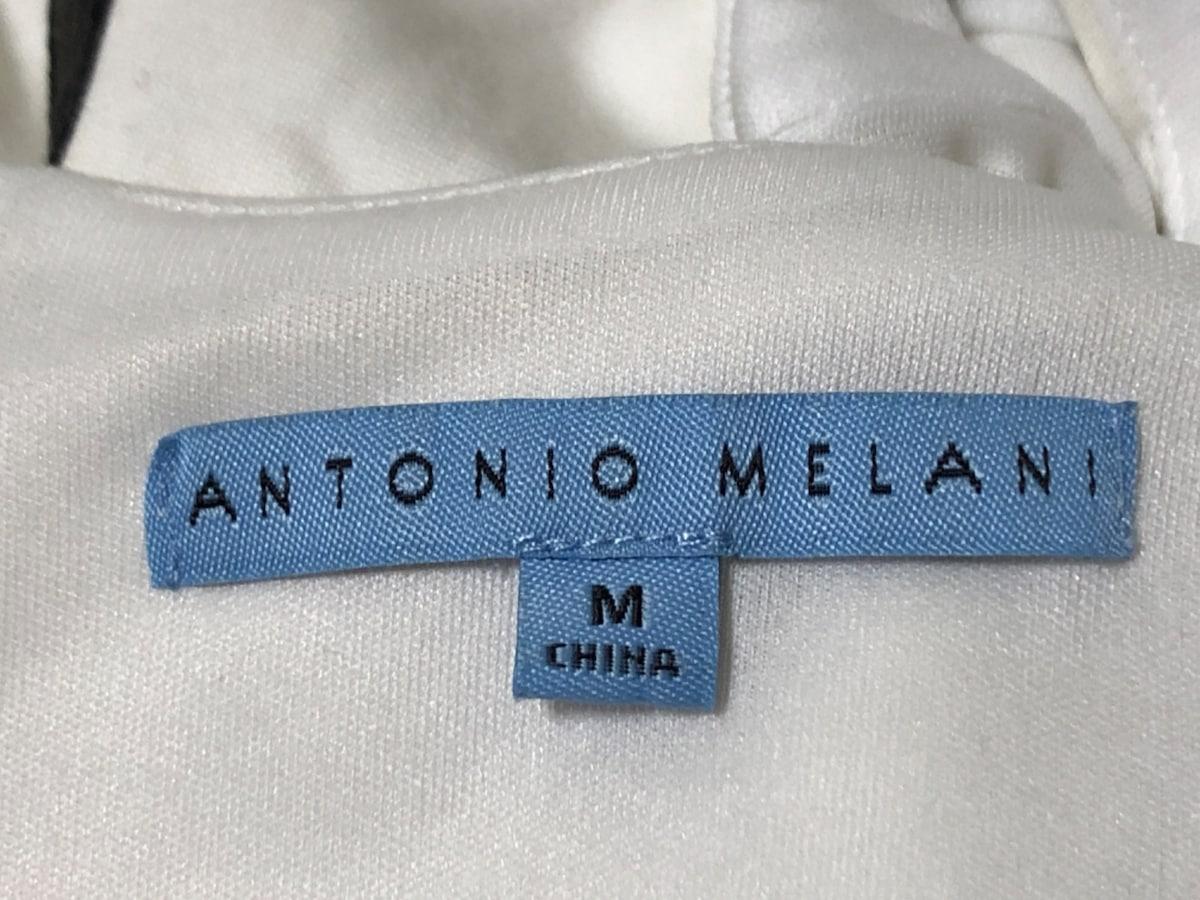 ANTONIO MELANI(アントニオメラーニ)のワンピース