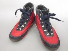 SCARPA(スカルパ)のブーツ