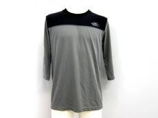 THE NORTH FACE×Taylor design(ザノースフェイス×テイラーデザイン)のTシャツ