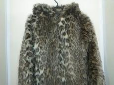 ハドソンハニーのコート