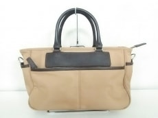 ダーウィンのハンドバッグ