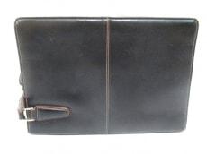 ダーウィンのセカンドバッグ
