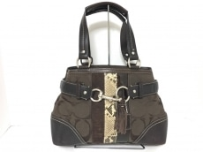 COACH(コーチ)のハンプトンズストライプ ミディアムキャリオールのハンドバッグ