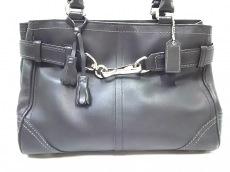 COACH(コーチ)のハンプトンズ レザー キャリーオールのハンドバッグ