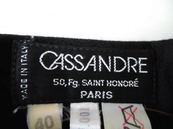カサンドレ スカート サイズ9 M レディース