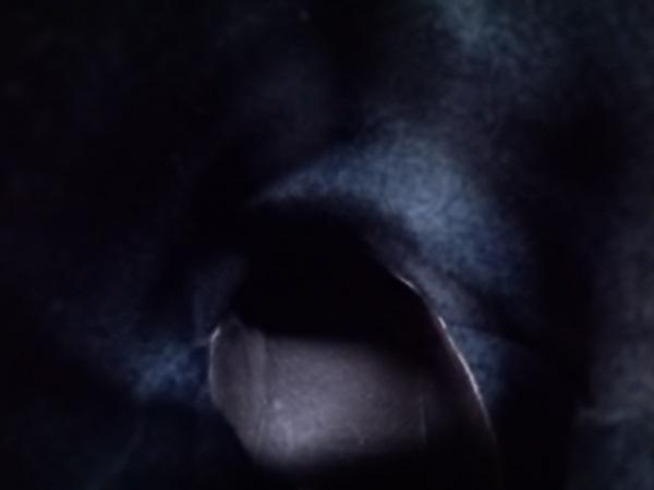 SAYA(サヤ) ショートブーツ レディース 黒 レザー 7