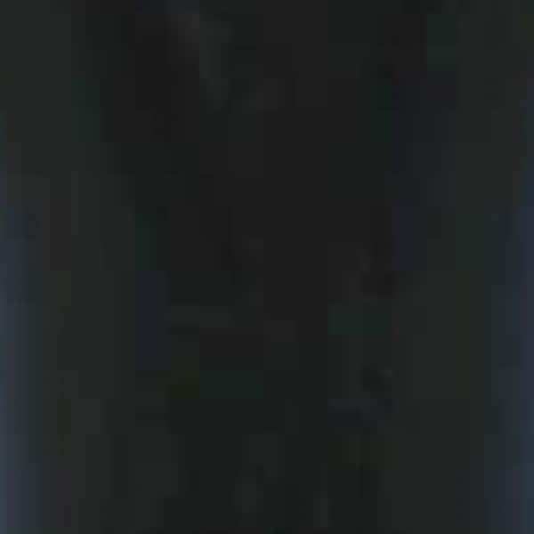 ERMANNO SCERVINO(エルマノシェルビーノ) ワンピース サイズ38 M レディース 黒