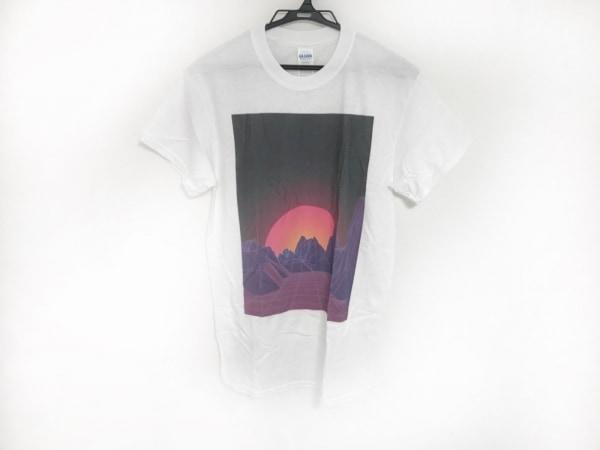 ギルダン 半袖Tシャツ サイズS メンズ美品