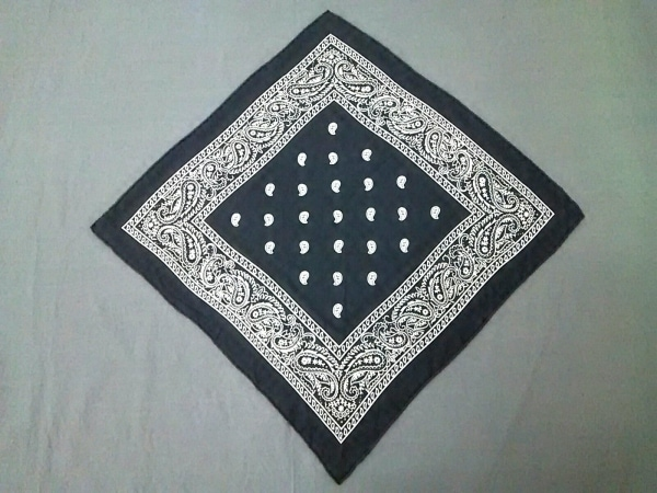 manipuri(マニプリ) スカーフ美品  ダークネイビー×白 ペイズリー柄