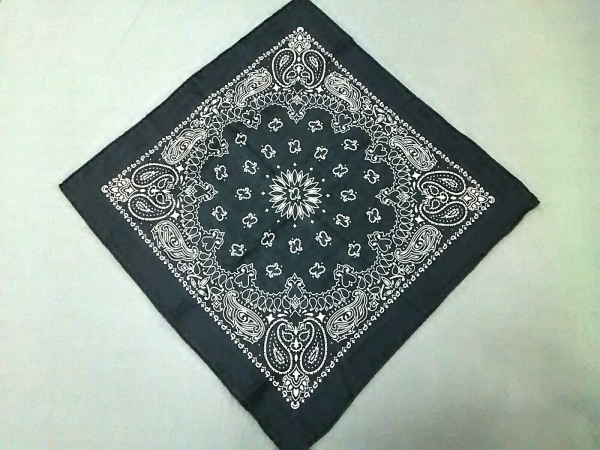 manipuri(マニプリ) スカーフ美品  ダークネイビー×白 シルク