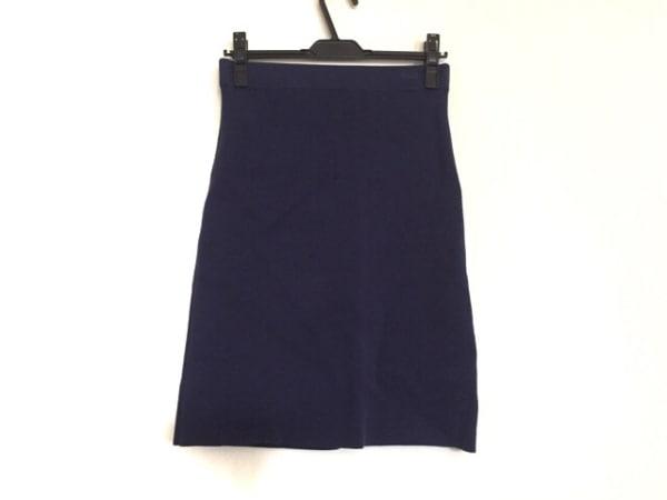 DRESSTERIOR(ドレステリア) スカート サイズ2 M レディース ネイビー ニット