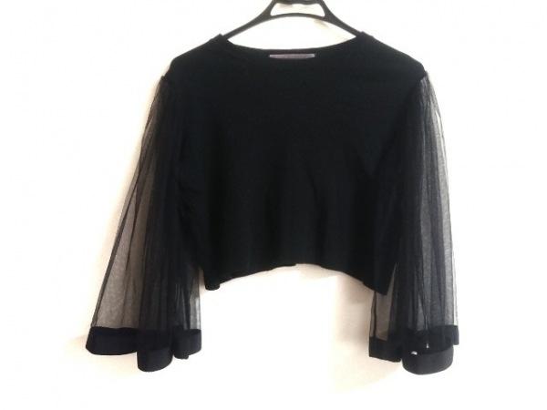 Honey mi Honey(ハニーミーハニー) 長袖Tシャツ サイズF レディース 黒 シースルー
