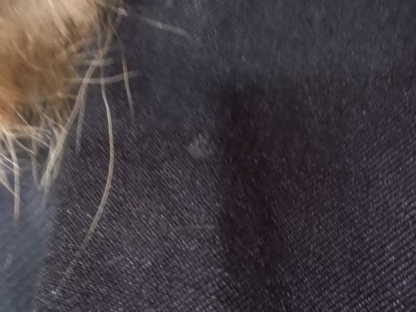 SISTERE(システレ) ジャケット レディース 黒×ブラウン ファー