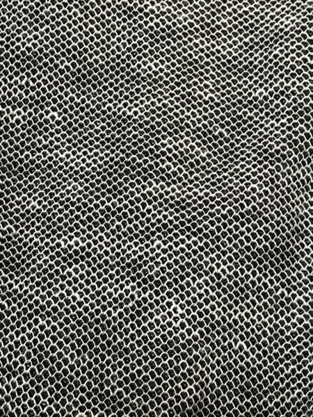 ジョセフオム 長袖カットソー サイズ48 XL レディース美品  グレー 9